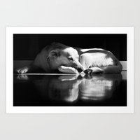 On Reflection Art Print