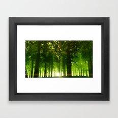 The Green Forest Framed Art Print