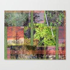 Trees & Moss Canvas Print