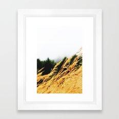 Amber Waves Framed Art Print