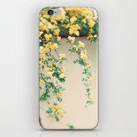 Sunny Days  iPhone & iPod Skin