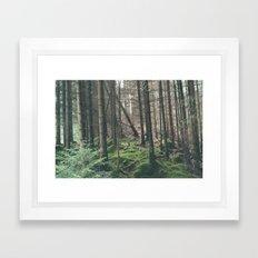 Mini - Woods Framed Art Print