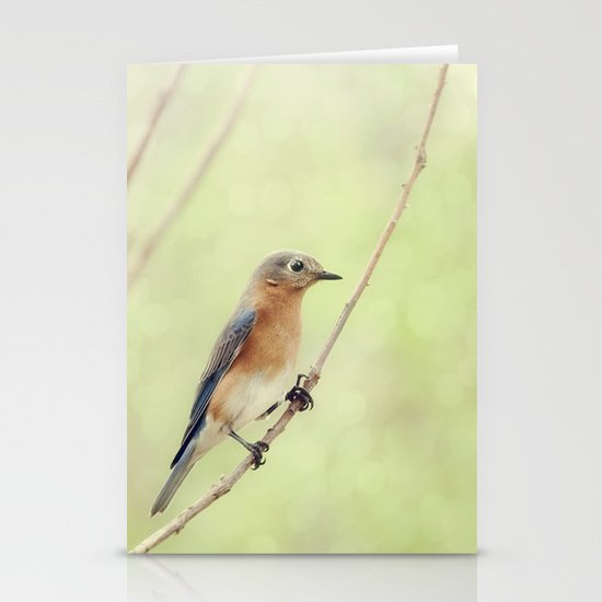 Perched On A Frail Branch Stationery Card