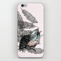 Birdster iPhone & iPod Skin