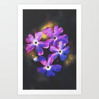 Watch Me Unfold Art Print