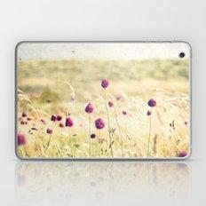 Houat #3 Laptop & iPad Skin