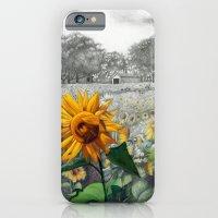 girasoli iPhone 6 Slim Case