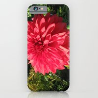 iPhone & iPod Case featuring Blooming Just For You by grandmat