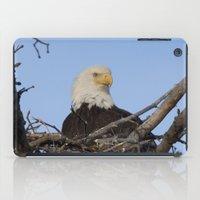 Eagle's Nest iPad Case