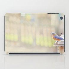 Bluebird Morning iPad Case