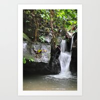 Waterfall In Trinidad Art Print