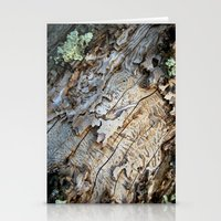 Eaten Wood Stationery Cards