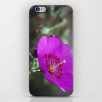 Satellite iPhone & iPod Skin