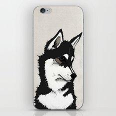 Nico the Husky iPhone & iPod Skin