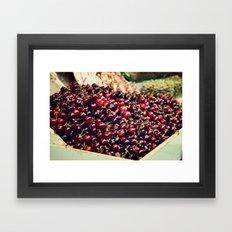 Summer Cherries Framed Art Print