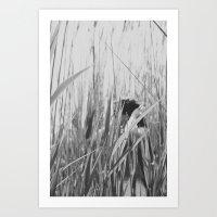 The Natural Art Print