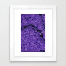 ºª+§ Framed Art Print
