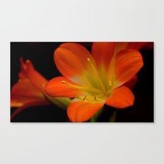 Flower Macro II Canvas Print