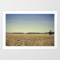 Lonely Field in Blue Art Print