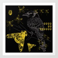 Bird & Beetles Art Print