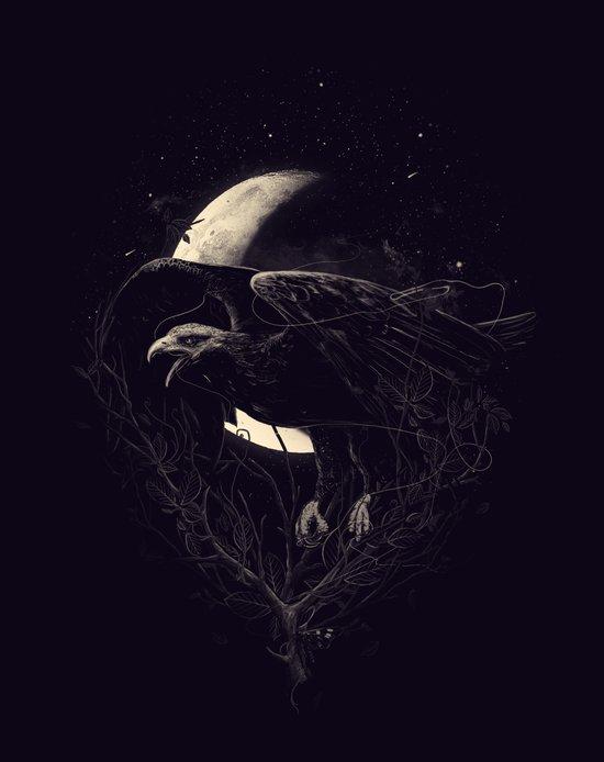 NightFlight Art Print