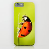 On top of a Grass iPhone 6 Slim Case