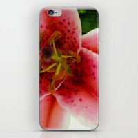 A Lily Of The Valley iPhone & iPod Skin