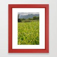 too much grass Framed Art Print