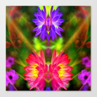 Pink And Purple Lotus Canvas Print