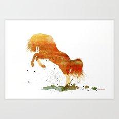 HORSES -Wild mountain pony Art Print