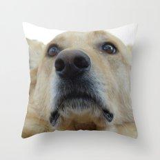 Indian Dog Throw Pillow