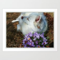 Sylvie Naps With the Crocuses  Art Print