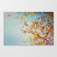 textured leaves. Canvas Print