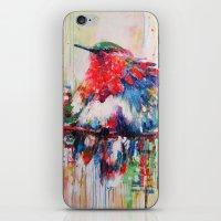 Colorful Bird- Nature  iPhone & iPod Skin