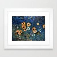 Abstract beautiful barnacles Framed Art Print