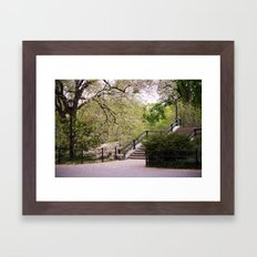 Spring in Central Park. Framed Art Print