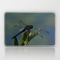 Only For A Day - Dragonfly Laptop & iPad Skin