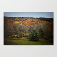 October Mountain Forest Canvas Print