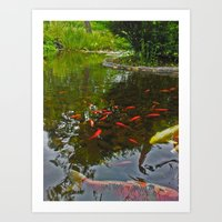 Fish in the pond Art Print