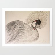 Crowned Crane Drawing Art Print