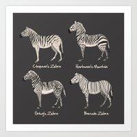 Zebra Chart Art Print