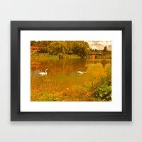 white swan Framed Art Print