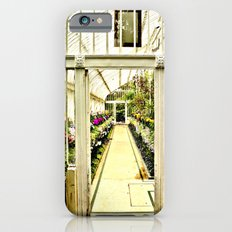 Life in  a glass house iPhone 6 Slim Case