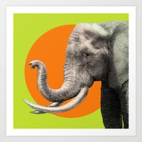 Wild 6 By Eric Fan & Gar… Art Print