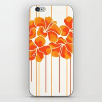 Hibiscus Stripe: Orange … iPhone & iPod Skin