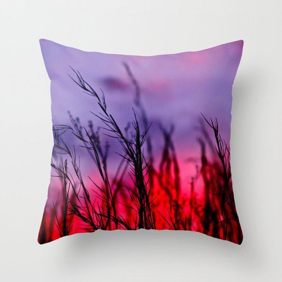 Colors to the West Throw Pillow