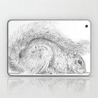 Squirrel Laptop & iPad Skin