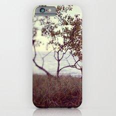 The Coast #2 iPhone 6s Slim Case