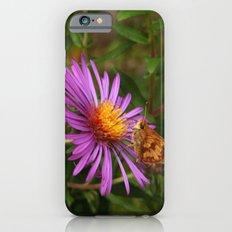 It's still summertime iPhone 6 Slim Case