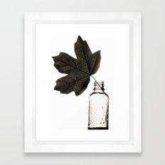 Leaf and Bottle Framed Art Print